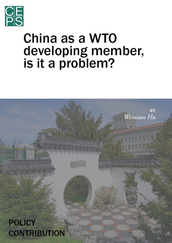 China as a WTO developing member, is it a problem?